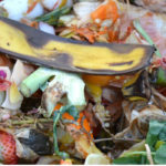 Approvata la legge contro lo spreco alimentare
