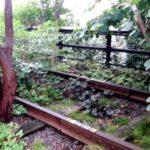 High Line, era uno scalo ferroviario, oggi è un parco giardino pensile