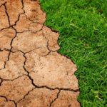 Il rapporto IPCC sulla lotta ai cambiamenti climatici