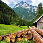 Premi a progetti di giovani sulla valorizzazione delle Alpi
