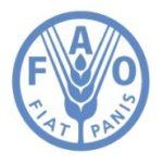 Stage FAO retribuito presso gli uffici di Roma e di tutto il mondo