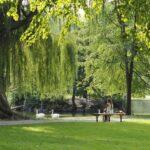 """Sono aperte le selezioni al corso """"Progettazione e valorizzazione di parchi e giardini"""""""